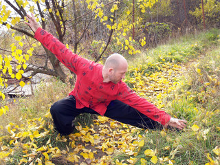 Man practises tai chi in autumn park
