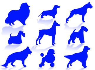 razze di cani in silhouette