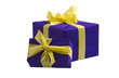 Two blue gift boxes with bows and ribbons, isolated