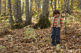 Precious child picking mushrooms in a forest in autumn poster
