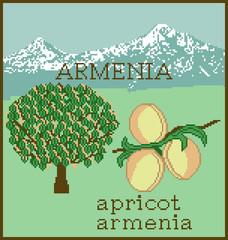 Souvenir Abricot