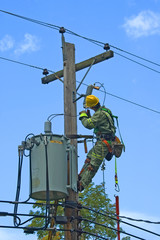 lineman perforiming security maintenance