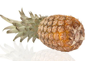 One whole pineapple isolated on a white background.