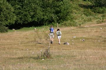 Caminhamos para montanha