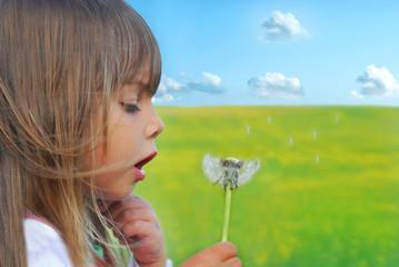 Cute litlle girl blowing dandelion