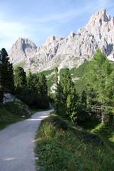 Sentiero della montagna