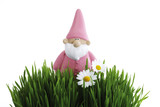 Garden gnome, grass in foreground