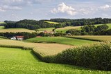 Gerany, Upper Bavaria, fields in hilly landscape