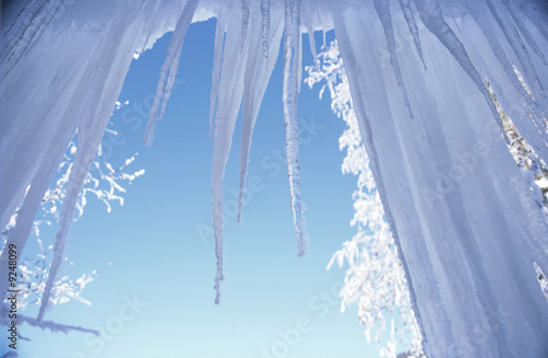 Icicles against clear sky