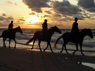 sunset ride