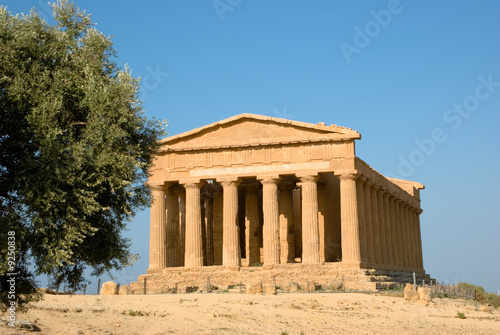 doric temple of Concordia in Agrigento with olive tree