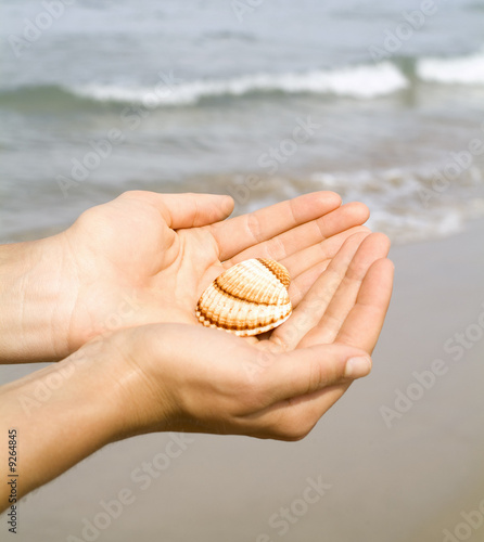 girl holding a shell in her hands at the beach