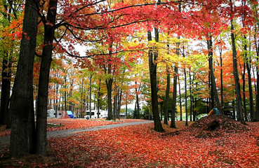 Michigan Landscape