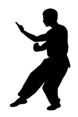 Black silhouette of  karate man prepared for fight