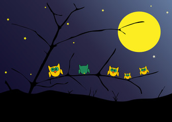 Owls in the night