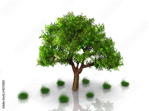 Staande foto Kameleon arbre et herbe
