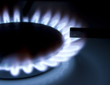 Bluish flames of a gas stove burner poster
