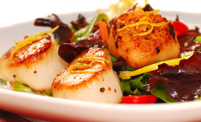Fresh seared sea scallops with a salad
