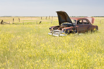 vintage abandoned car in a Wyoming field