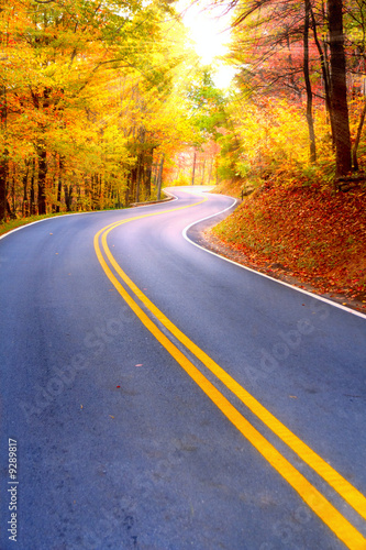 Winding road - 9289817