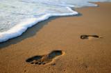 Fototapety Footsteps on surf