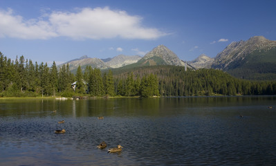 Mountain lake in National Park High Tatra, Slovakia