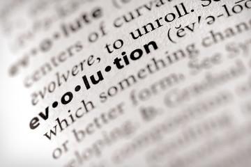 """evolution"". Many more word photos in my portfolio...."