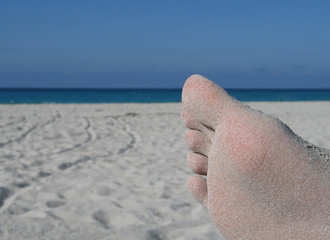sandy foot on the caribbean beach