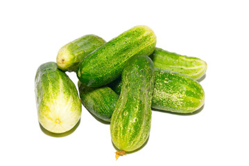 Many green cucumbers isolated on white.