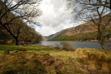 Ireland nature 2 (Glendalough)
