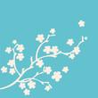 branche de fleurs sur fond turquoise