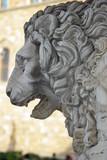 Firenze, loggia dei Lanzi: leone di sinistra 1 poster