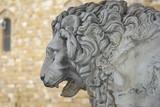 Firenze, loggia dei Lanzi: leone di sinistra 2 poster