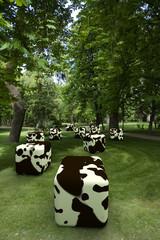 Cowcube's 2