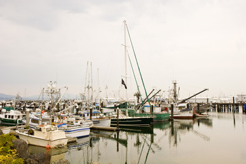 A marina full of sailboats and yachts on a cloudy day