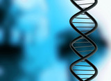 DNA over a medical illustration in blue and black