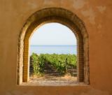 Arkada okienna z widokiem na winnicę - 9361862