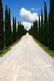 Fototapety Wolkenhimmel,Zypressen, der Weg ist das Ziel,Toskana,