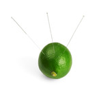 lime with acupuncture needles isolated on white background poster