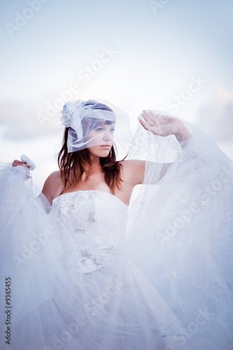 poster of Fashion bride in fluffy wedding dress posing outdoors