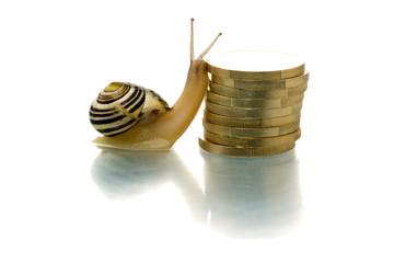 Snail climbing coin pile