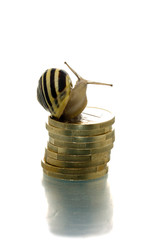 Snail on coin pile looking backward