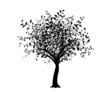 vecteur série - arbre noir isolé sur fond blanc