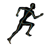 Man Running Showing Two Pathways Connecting Brain to Muscles poster