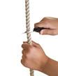 Tagliare la corda!