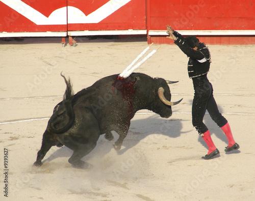 Deurstickers Stierenvechten Banderilles