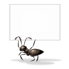 ant with trust