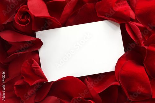 Blank white gift card on a bed of red rose petals