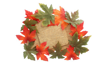 fall background with green and oranges leaves covering