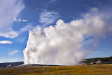 The most well-known geyser in Yellowstone- Old Faithful. poster